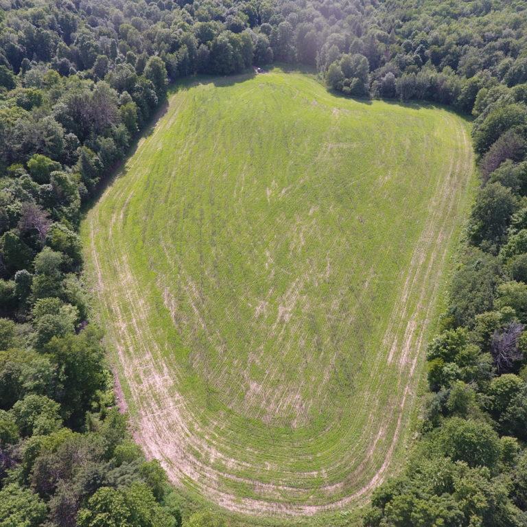 NTC Farm Back Field